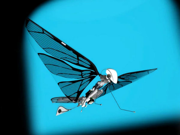 metafly-flying-model-insect (5)