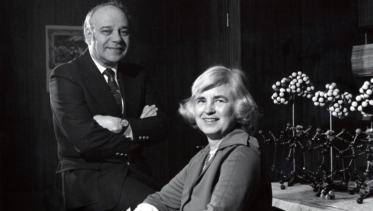 زوج دانشمند