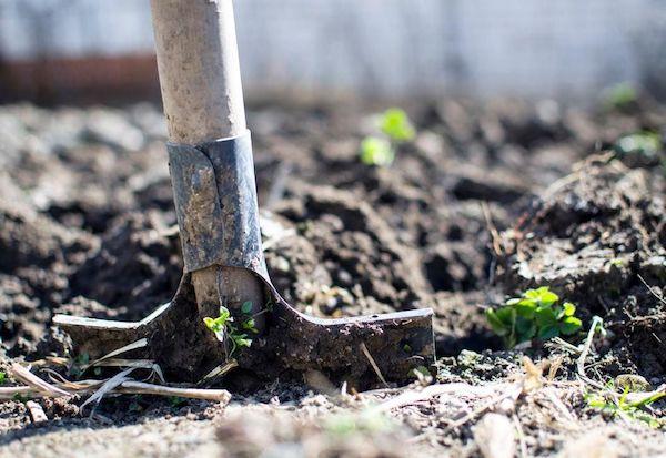 تکنولوژی و کشاورزی