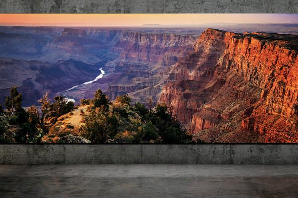 تلویزیون میکرو LED