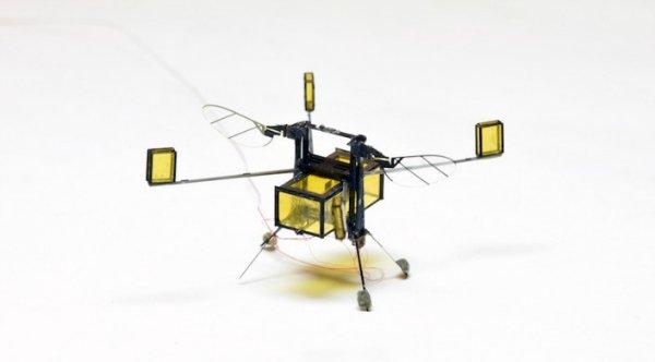 زنبور رباتیک