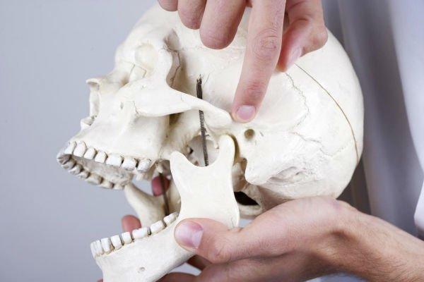 تکامل استخوانی
