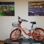 بیدود: میخواهیم همه شهروندان از دوچرخههای ما استفاده کنند