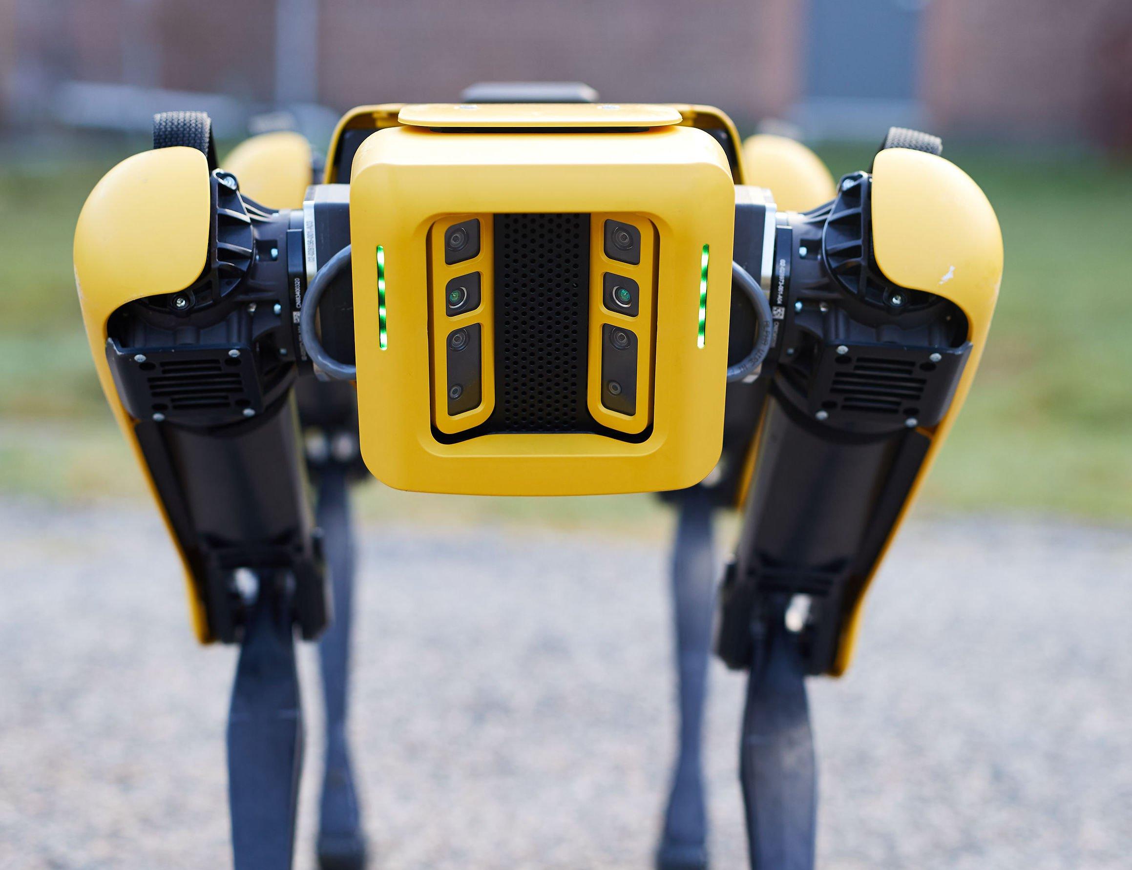 سگ رباتیک اسپات ساخت بوستون داینامیکس به شکل محدود عرضه شد