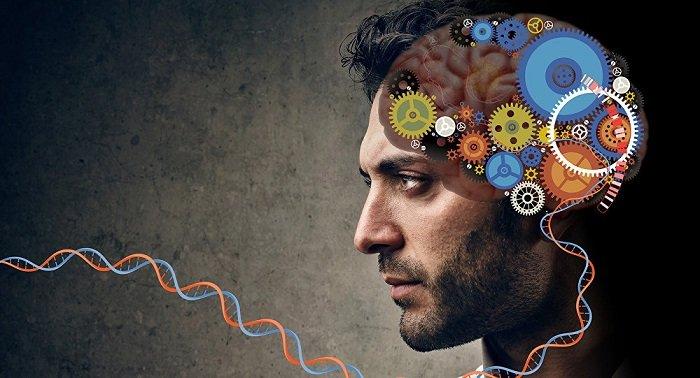 ژن تنظیم کننده اصلی