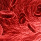 پایان محدوده امن LDL؛ کلسترول بد خون به هر میزان خطرناک است