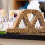 ساخت بتن زنده به کمک باکتری با قابلیت جذب دی اکسید کربن