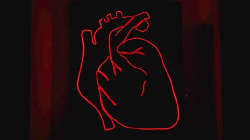 رژیم غذایی با پروتئین بالا احتمال سکته قلبی را افزایش میدهد