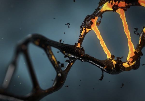 ذخیره داده درDNA