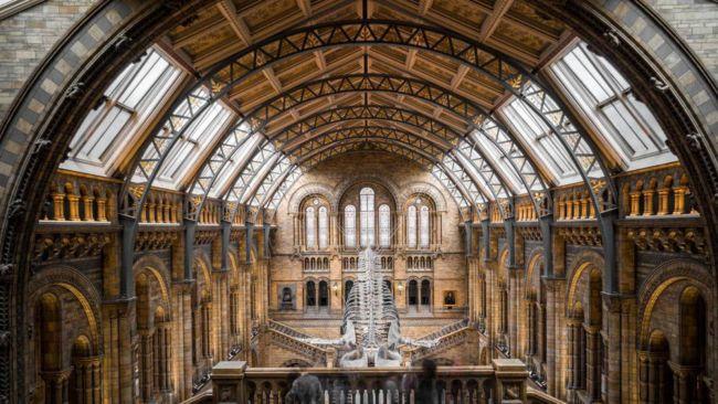 7rvxbdBpQDTBKoewapZBDP 650 80 تور مجازی موزه ها و اماکن تاریخی دنیا برای بازدیدکنندگان در قرنطینه اخبار IT
