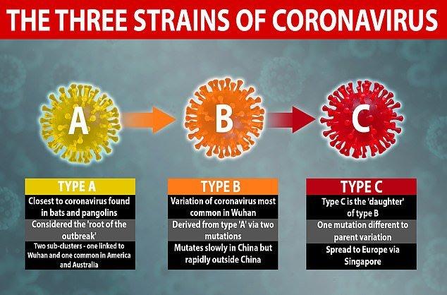 شناسایی سه نوع ویروس کرونا در جهان