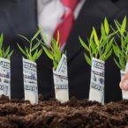 استارتاپهای خاورمیانهای در فصل اول ۲۰۲۰، جذب سرمایهای ۲۷۷ میلیون دلاری داشتند