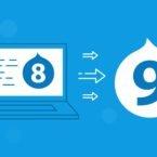 دروپال ۹ در راه است؛ چه قابلیتهایی به نسخه جدید میآید؟