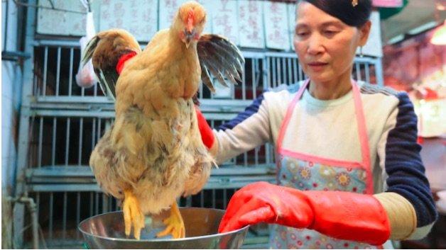 بازار غذاهای دریایی ووهان