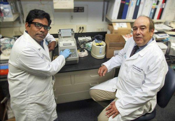 محققان می گویند کاهش سطح ریز RNA ها احتمالا یکی از دلایل آسیب پذیری بیشتر افراد سالخورده در برابر ویروس کرونا است
