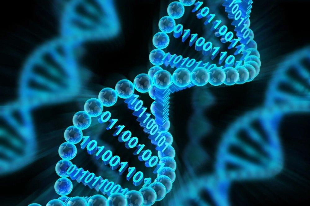 ذخیرهسازی اطلاعات در DNA