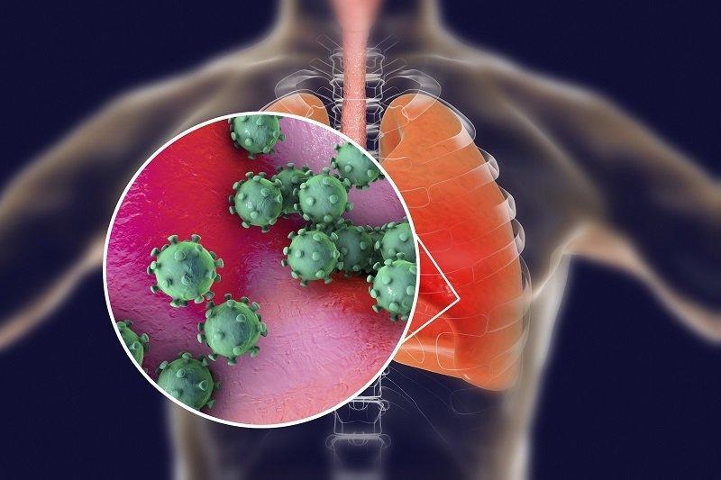 Coronavirus ساخت گجت کوچکی که با ارسال امواج فراصوت به طحال کرونا را درمان میکند اخبار IT
