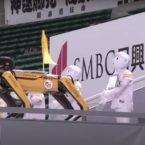 حرکات جالب رباتهای بوستون داینامیکس در نقش تماشاگر بیسبال [تماشا کنید]