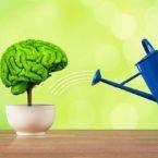 با این ۵ روش حافظه خود را تقویت کنید