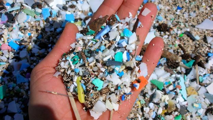 کشف ذرات بسیار کوچک پلاستیک در نمونه ریه، طحال، کبد و کلیه بافت بدن انسان