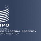 گزارش WIPO: ایران رتبه دوم نوآوری در بین کشورهای آسیای میانه و جنوبی را دارد