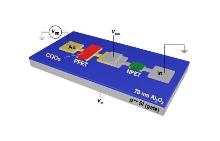 محققان با ساخت ترانزیستورهای کوانتوم دات، تولید مدارهای الکترونیکی انعطافپذیر را ممکن کردند
