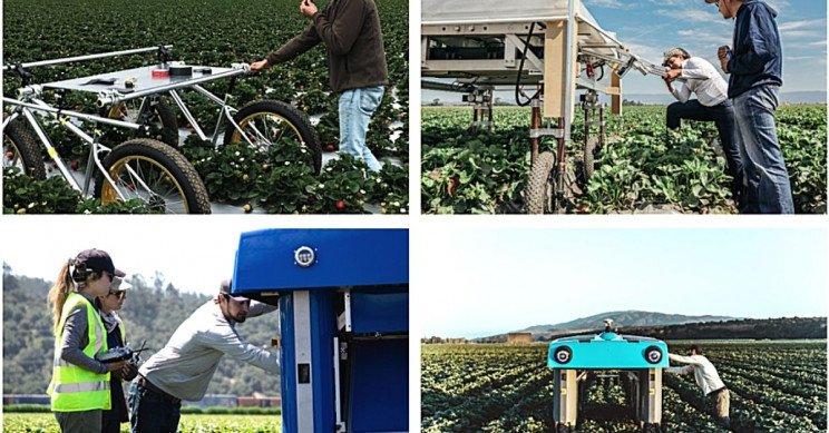 alphabet project x mineral resize md پروژه «مینرال» آلفابت کشاورزی را با رباتها و هوش مصنوعی دگرگون میکند اخبار IT
