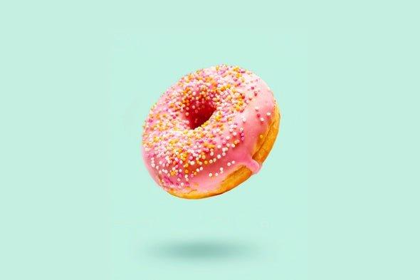 brain junk food 2 مغز انسان محل قرارگیری غذاهای پرکالری را بهتر از مواد غذایی سالم بخاطر میآورد اخبار IT