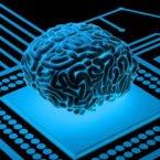 یک راه جدید برای ایمپلنت رابطهای مغزی-کامپیوتری: از طریق رگهای خونی