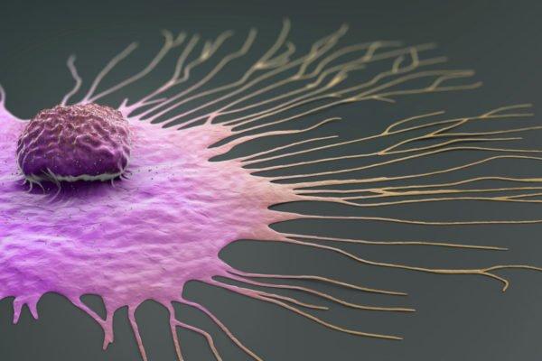 محققان با ترکیب داروهای بیولوژیکی و ADC موثرتر با سرطان مبارزه میکنند