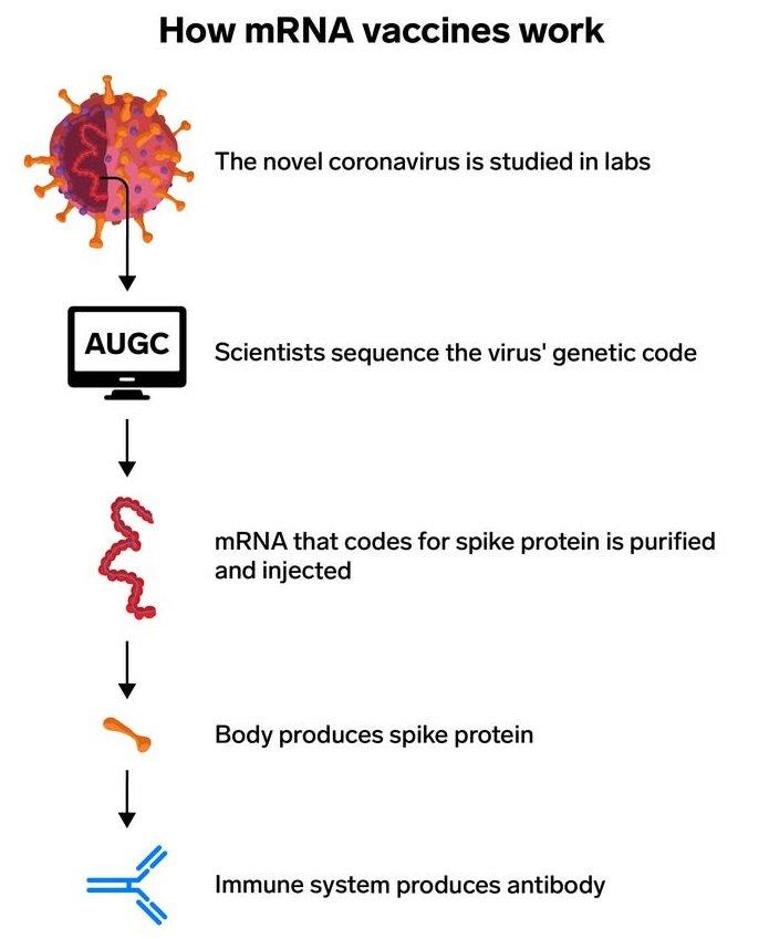 واکسن mRNA مدرنا