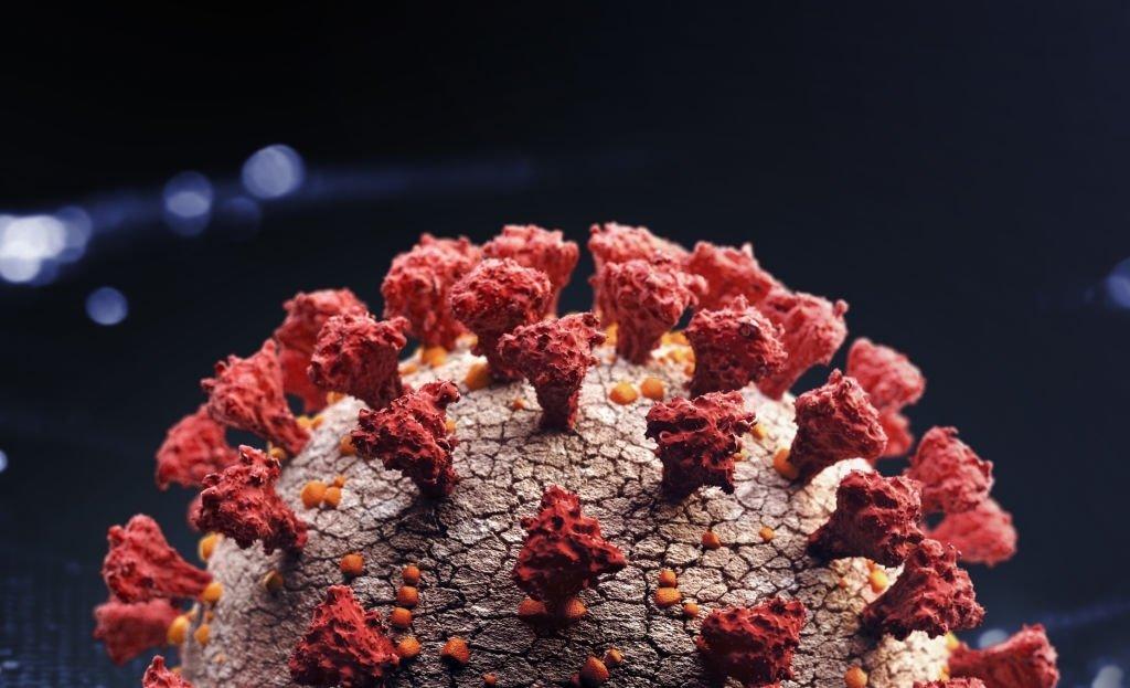 5fdf38a85fbc7 آیا باید نگران جهشها و گونههای ویروس کرونا باشیم؟ هرآنچه باید بدانید اخبار IT