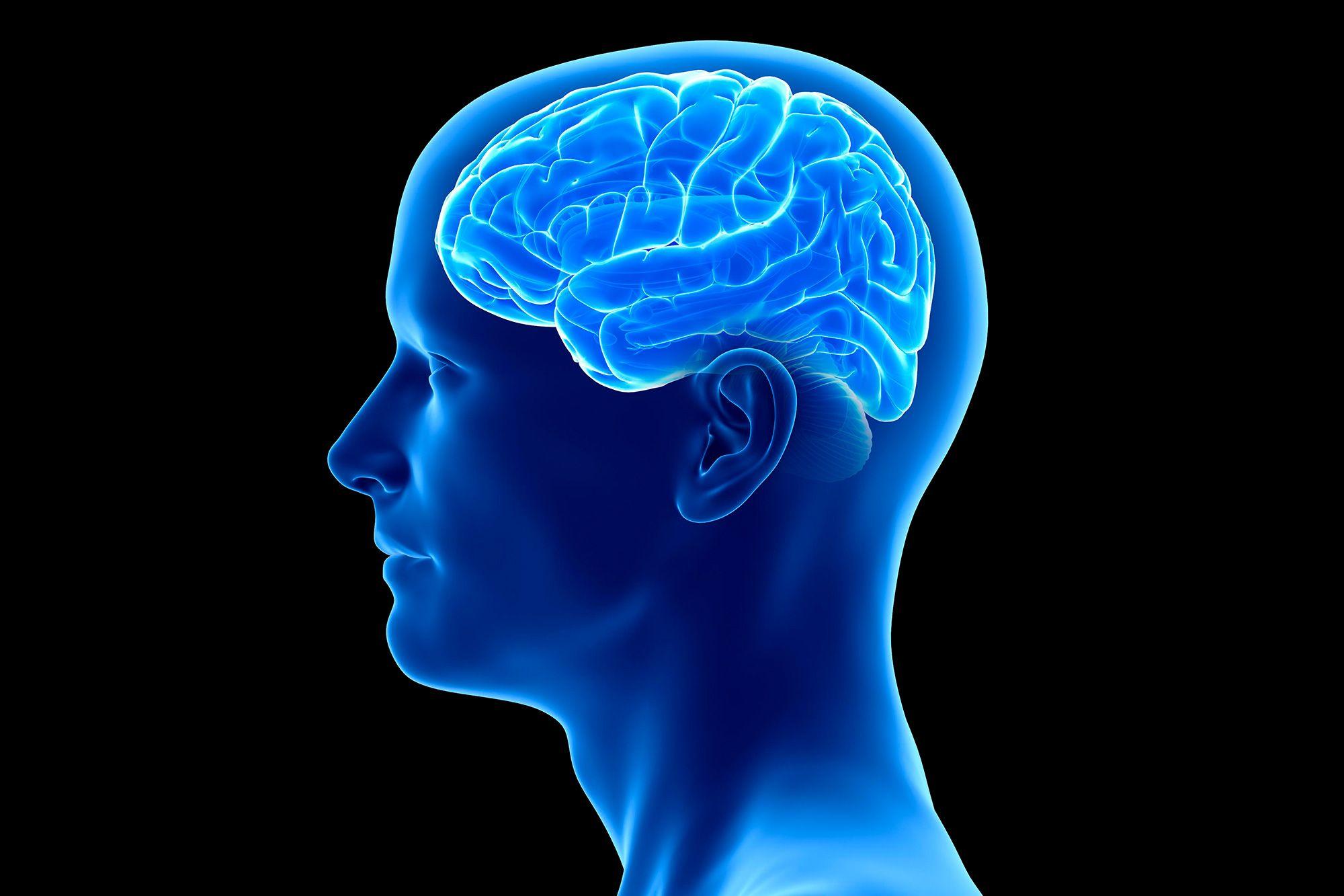 روند پیری مغز