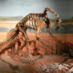بازسازی مغز یکی از قدیمیترین دایناسورهای دنیا به صورت دیجیتالی