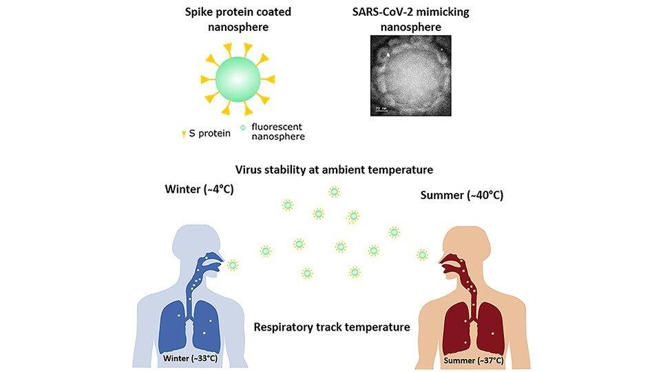 تغییر دمای آب و هوا احتمالا تاثیری روی انتقال ویروس کووید ۱۹ ندارد اخبار IT