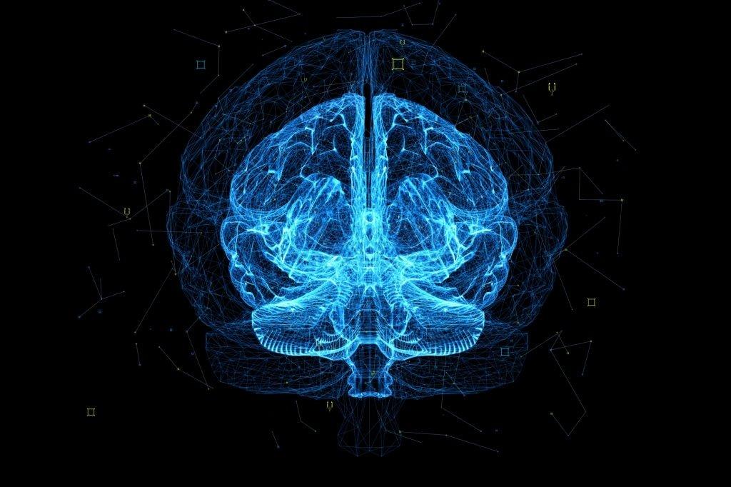 شناسا در سال جدید به دنبال سرمایهگذاری در تیمهای فعال حوزه هوش مصنوعی است