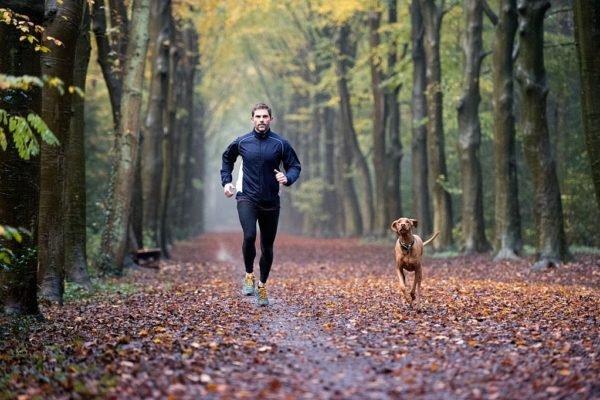 ماهیچههای انسان با ورزش میتوانند به طور مستقل با التهاب مزمن مقابله کنند
