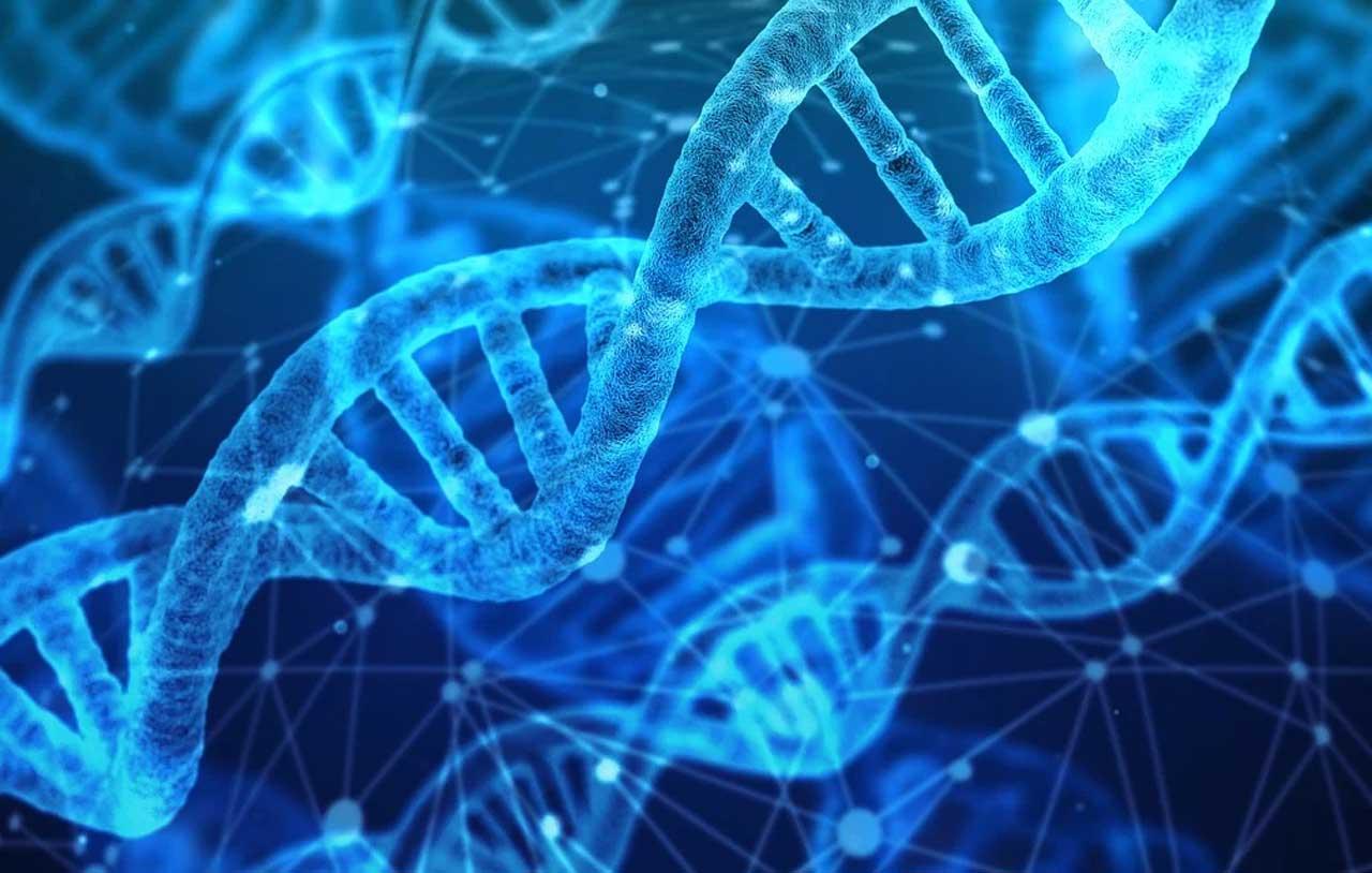 DNA محیطی