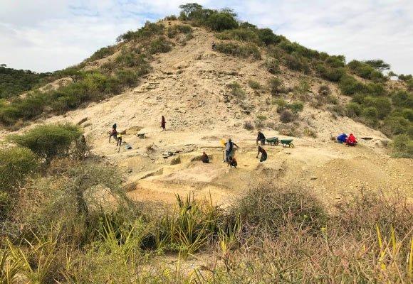کشف ابزارهای ۲ میلیون ساله در تانزانیا تطابق انسان با تغییرات را نشان میدهد