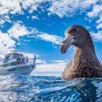 برندگان رقابت عکاسی از طبیعت جهان در سال ۲۰۲۰ معرفی شدند