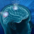 دارپا در پی خواندن سیگنالهای مغزی با تزریق میلیونها نانو ذره به بدن است