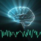 پژوهشی جدید از بازگشت به زندگی برخی ژنهای مغز پس از مرگ خبر میدهد