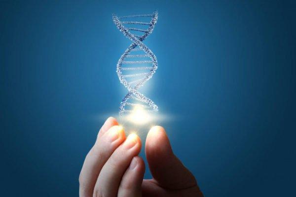 محققان ۶۴ ژنوم کامل انسان را به منظور درک بهتر تنوع ژنتیکی توالییابی کردند