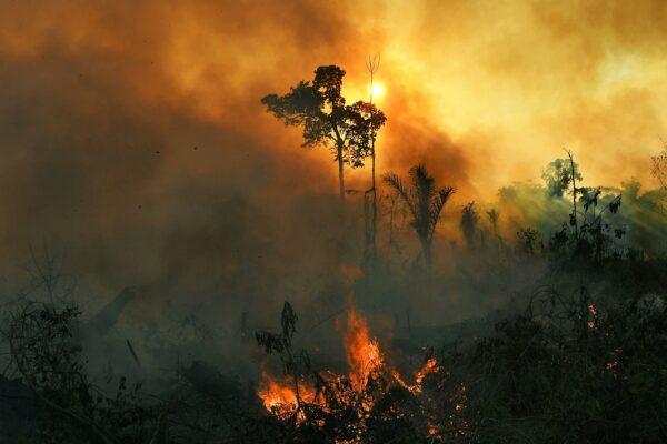 زمین در حال نابودی است؛ انسانها به ۹۷ درصد اکوسیستم زمین آسیب زدهاند
