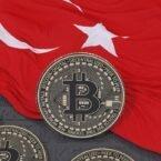 ترکیه با اتهام کلاهبرداری، شمار بالایی از فعالان صرافیهای رمزارز را دستگیر کرد