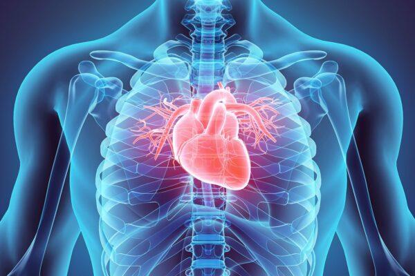 پژوهشی جدید: احتمال آسیبهای جدی قلبی در ابتلای خفیف به کرونا بسیار کم است