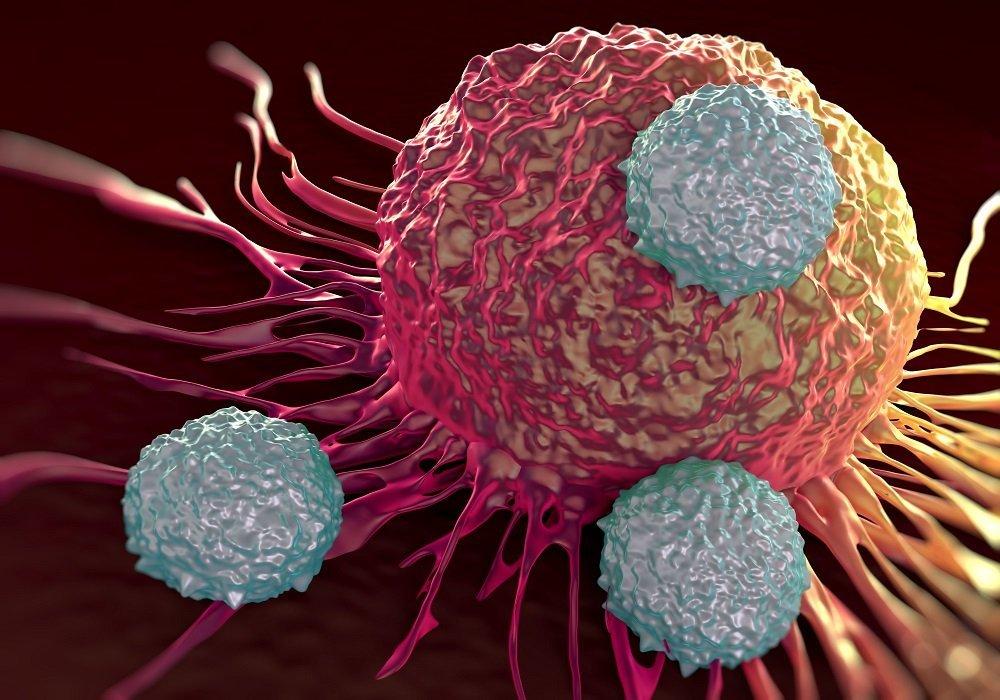 سلولهای لنفوسیت تی