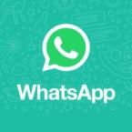 واتساپ اضافه کردن استیکر به چتهای متنی را برای کاربران سادهتر میکند