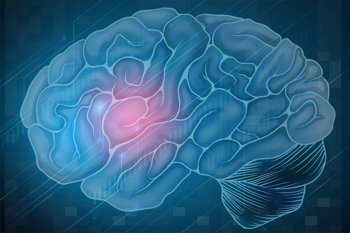درمان دارویی جدید میتواند از  آسیب مغزی هنگام کمبود اکسیژن محافظت کند