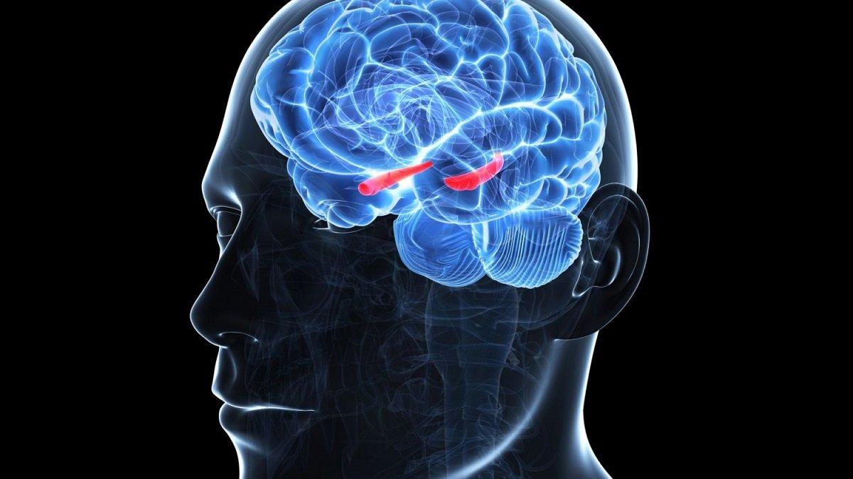 دانشمندان با اندازهگیری سطح اکسیژن خون در مغز، به دنبال دلایل ایجاد آلزایمر هستند